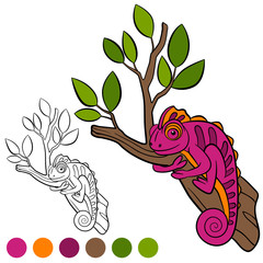 Coloring page. Color me: chameleon. Little cute chameleon sits on the tree branch.