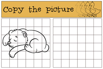 Children games: Copy the picture. Little cute baby bear sleeps.