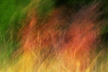 Abstract autumn nature background texture