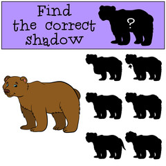 Children games: Find the correct shadow. Cute brown bear.