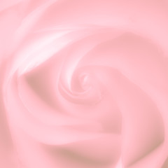 Rose soft pink blur background