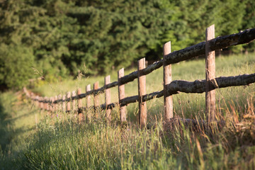 Rustic pole fence
