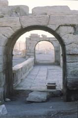 Palmyra, vintage picture
