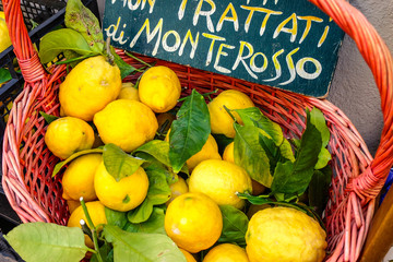 Limão Siciliano - Cinque Terre - Itália