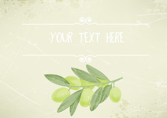 vintage background with a green olive branch, place for text. vector illustration