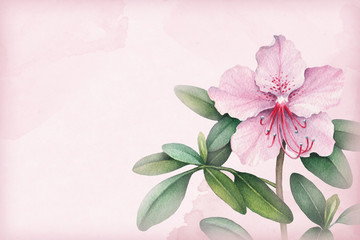 Background with watercolor flowers. Perfect for greeting cards