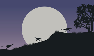 At night Eoraptor in hills scnery silhouette
