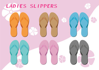 Ladies slippers on the background two tone color