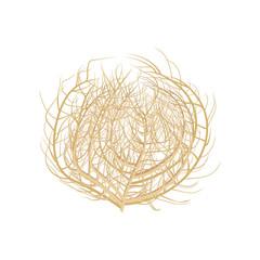 Tumbleweed vector illustration .