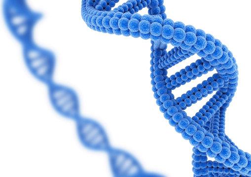 Blue DNA.