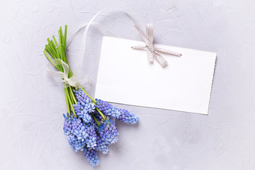 Bunch of blue spring muscaries flowers and empty tag on textured