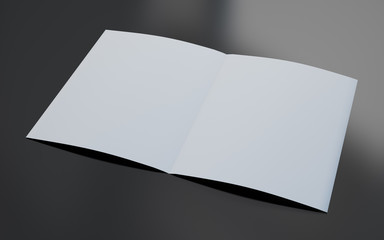 blank brochure opened