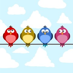 Cute color birds on wire