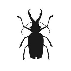 Big Beetle Deer with Horns