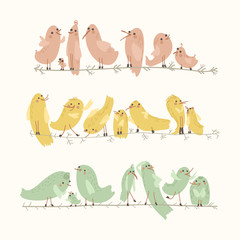 Vector set of cute birds. Cartoon collection with funny little bird family.