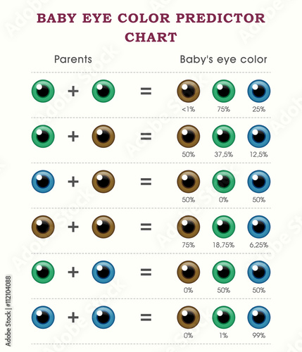 Baby Eye Color Predictor Chart Template Stock Image And Royalty