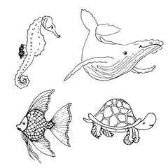 Vector set of ocean animals. Hand drawn underwater cartoon creatures. Seahorse, whale, fish, turtle. Sea life illustration.