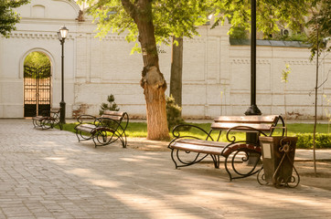 Benches, tree, lamps in park.