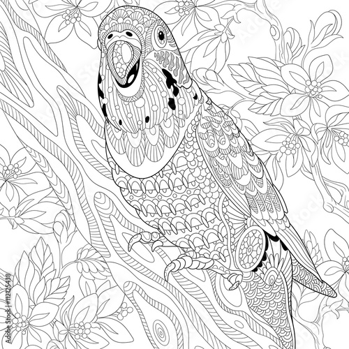 Kleurplaat Flamingo Jungle Quot Zentangle Stylized Cartoon Budgie Parrot Among Cherry