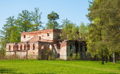 Ruins of an old building in the forest