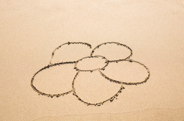 Flower drawn in the sand