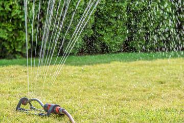 Bewässerung des Rasens für ein saftiges Grün