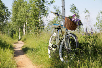 leisure in nature/ summer landscape with recreational bike and wild flowers in a basket