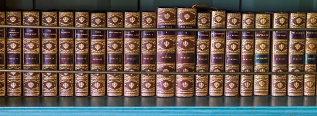 horizontal book shelf with leather bound collector antique books embossed with gold writing