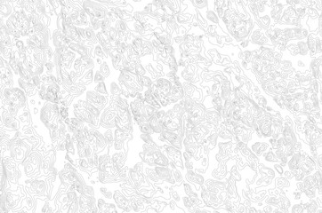 fictional topographic map, vector background