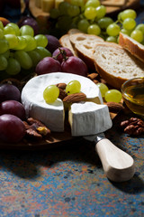 Camembert cheese, fruits and honey on dark background, vertical
