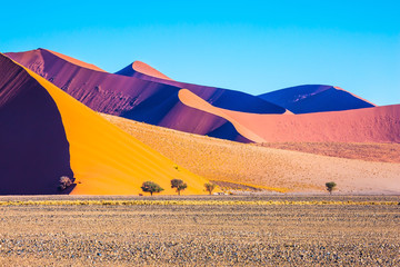 The sharp crests of orange dunes