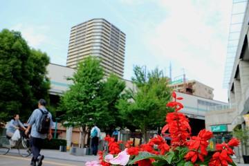 埼玉 武蔵浦和駅前の風景