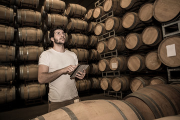 Winemaker counting the barrels with a tablet in large storage