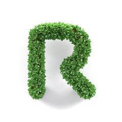Green leaves R ecology letter alphabet font