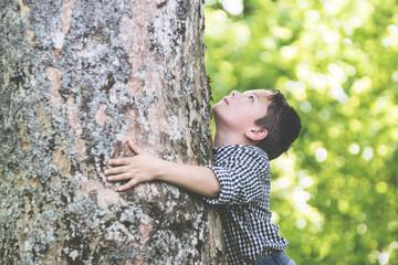 Kleiner Junge blickt staunend an altem Baumstamm hoch