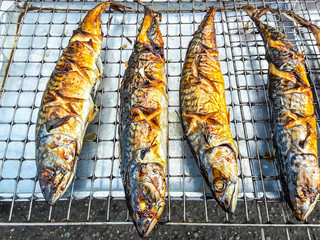 Grill fresh fish cooking, seafood meal