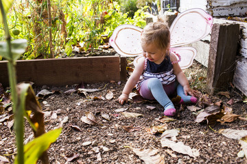 Caucasian baby girl wearing fairy wings in garden