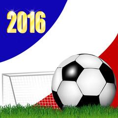 Fußball vor Tor mit französischer Fahne