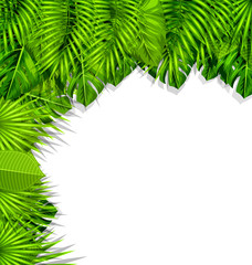 Illustration Summer Nature Background with Green Tropical Leaves