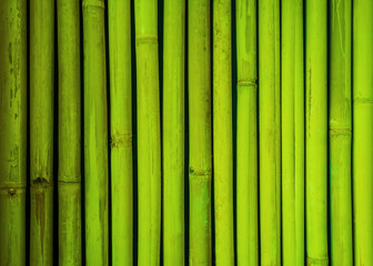 Search Photos Quot Bamboo Texture Quot