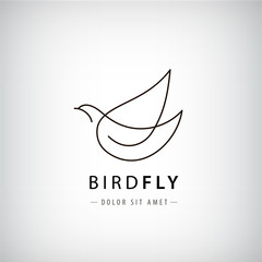 Vector line bird logo, pigeon silhouette, flying abstract