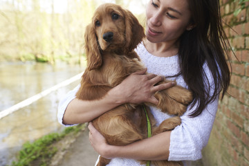 Cocker Spaniel Owner Holding Dog On Outdoor Walk