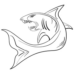Hand-drawn ink sketch shark