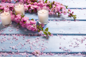 Background  with sakura  pink flowers  and candles on blue woode