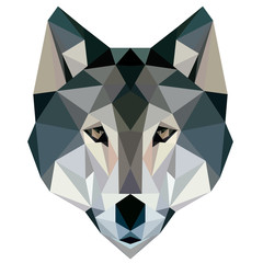 wolf low poly design geometric animal illustration vector face logo icon image