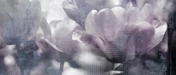 Fotoväggar - tulpen dunkelgrau konzept