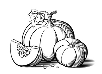 Stylized image of pumpkins. Big pumpkin, small pumpkin and pumkin slice with seeds. Outline