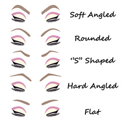 Eyebrow shapes illustration. Different eyebrow set illustration. Vector illustration.