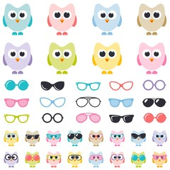 set of colorful owls with sunglasses