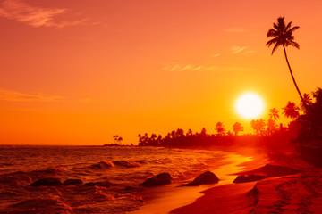Beautiful warm sunset on tropical ocean beach